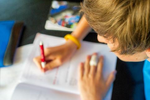 Persuasive writing homework help